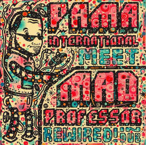 Pama International Meet Mad Professor - Album 2010