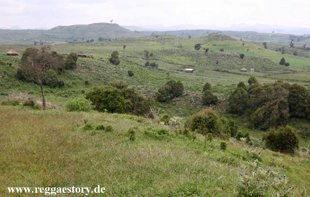 Ethiopia - Oromia - Bale Mountains Nationalpark - Dinsho